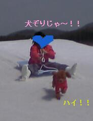 inuzori1.jpg