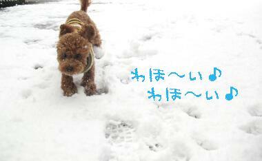 ouji-yuki.jpg