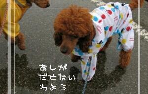 rain-tyad.jpg