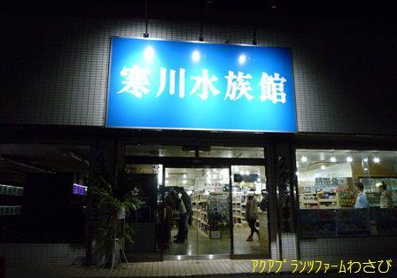 寒川水族館