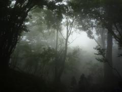 雲の中は幻想的♪