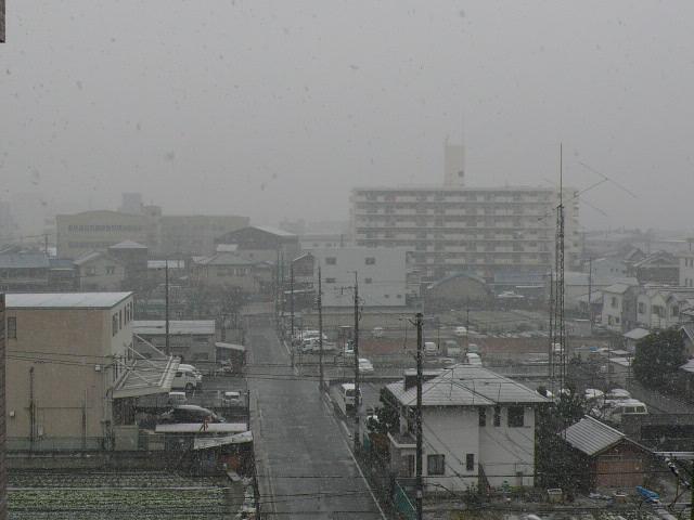 大阪に来て初の本格的な雪です。。