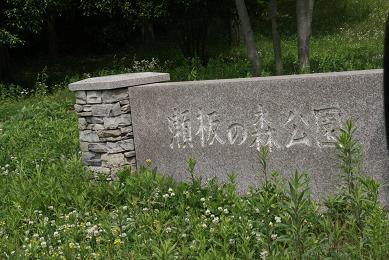 1_6593.jpg