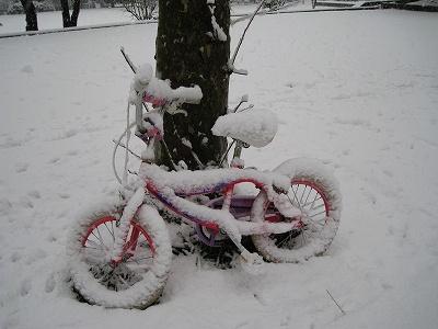 忘れ物の自転車