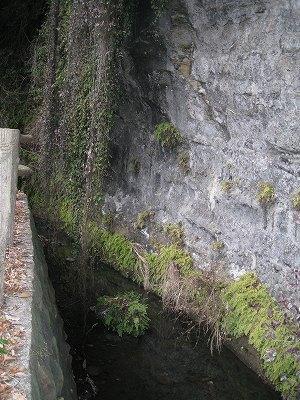 崖下の流れ