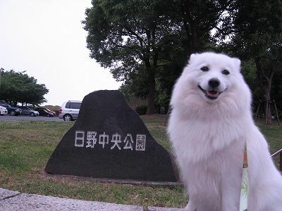 初めての公園だよ