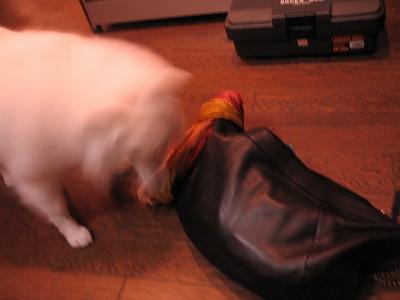 ア~!鞄も匂いがいっぱい