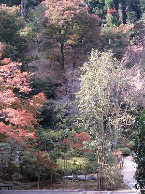 長寿寺、人も参拝不可。お料理を戴けば入れます。