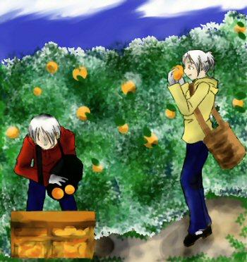 harvestry.jpg