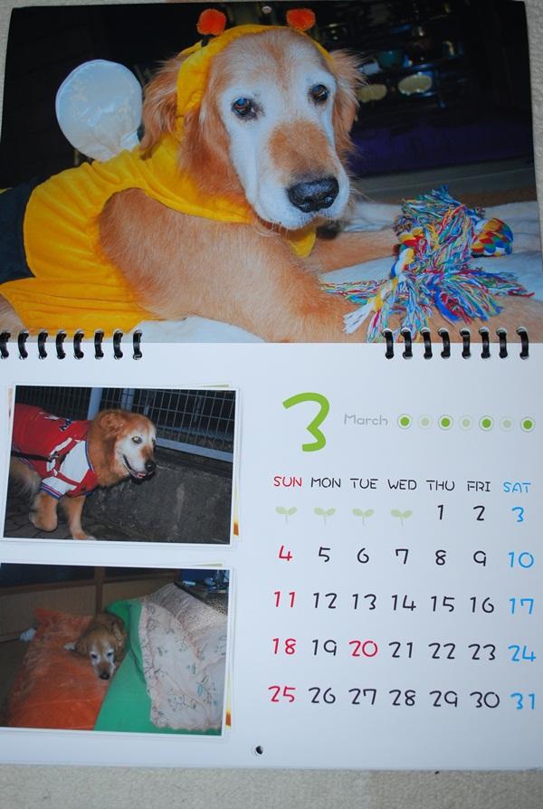 2012カレンダー3月