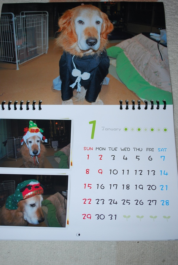 2012カレンダー1月