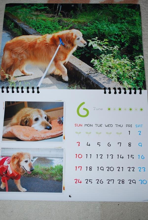 2012カレンダー6月