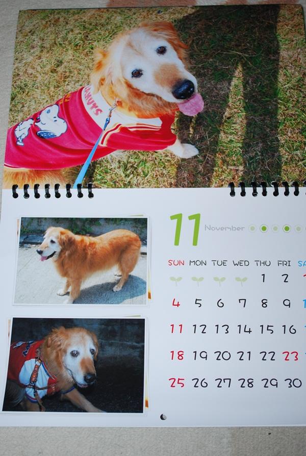 2012カレンダー11月