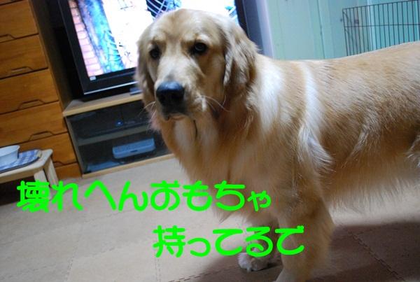 2012 01 16 04