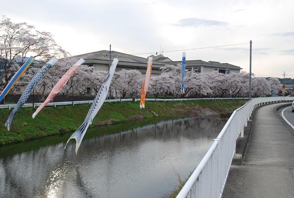 2012 04 15 04