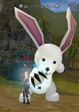 ウサギ狩り