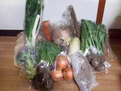 野菜0119