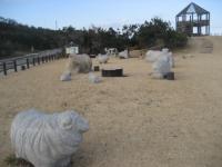鹿島臨海公園 035
