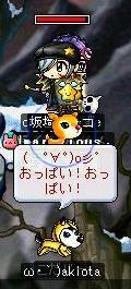 pet_a_boon2.jpg