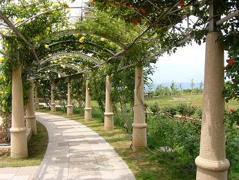 *ハイジの村~バラの回廊*