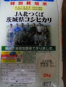 エコス2011.6.9