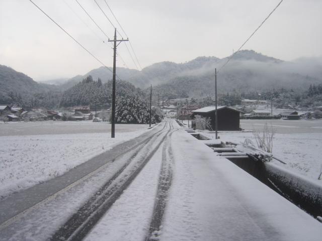 弥富の雪0701001