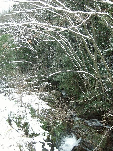2007/12/31馬取