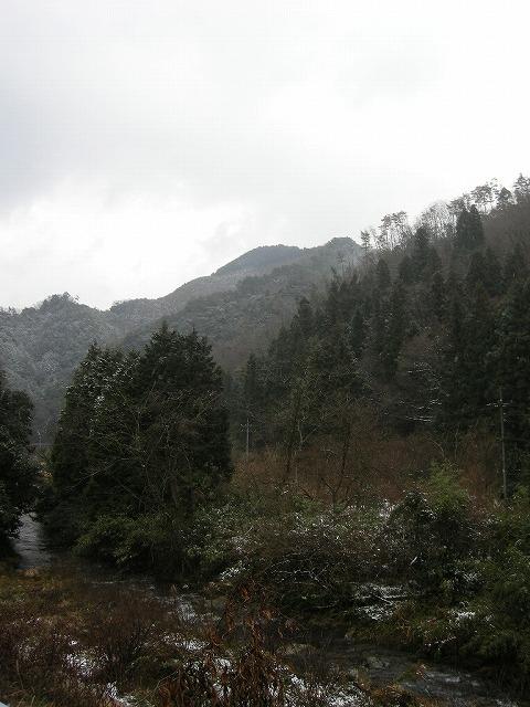 冬の鈴野川080124