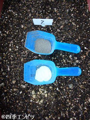 20110605 サツマイモ 2番施肥