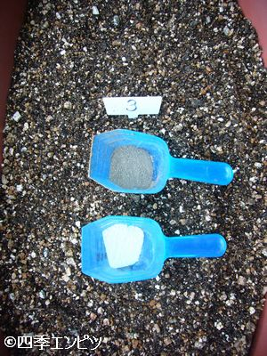 20110605 サツマイモ 3番施肥
