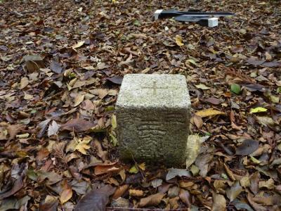 2011-10-23-023.jpg