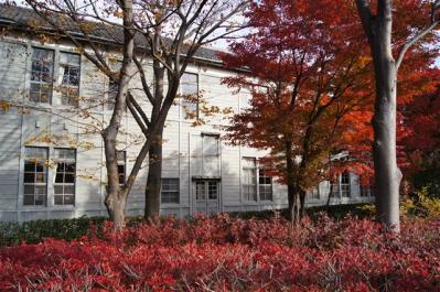 2011-11-13-290.jpg