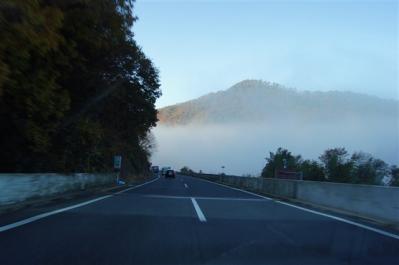 2011-11-26-002.jpg