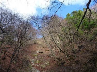 2011-12-04-061.jpg
