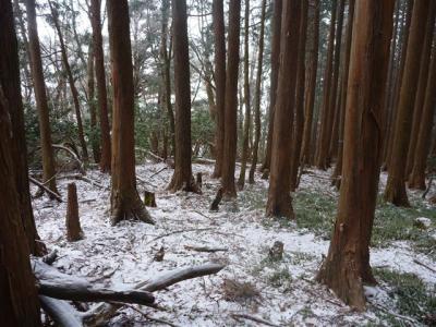 2011-12-18-025.jpg