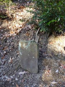 2011-12-30-019.jpg
