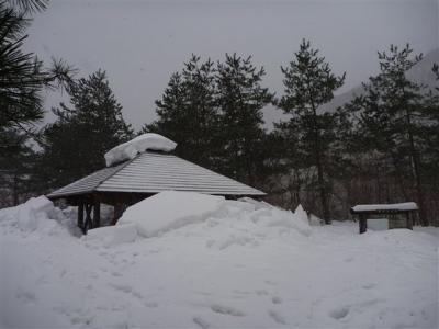 2012-01-04-012.jpg