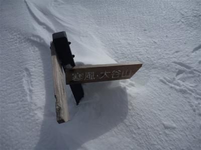 2012-01-04-133.jpg