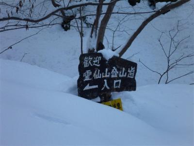 2012-01-29-016.jpg
