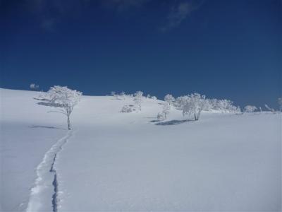 2012-01-29-091.jpg