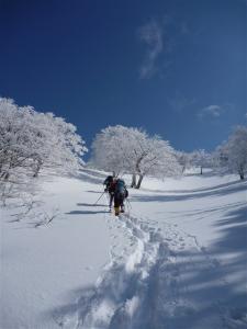 2012-01-29-127.jpg