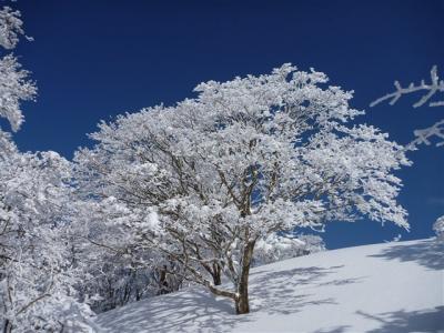 2012-01-29-129.jpg