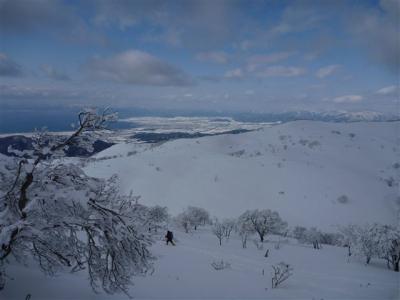 2012-01-29-203.jpg