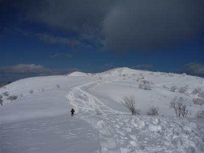 2012-01-29-208.jpg