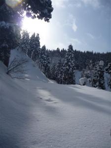 2012-02-11-010.jpg