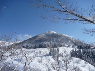2012-02-11-023.jpg