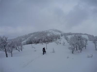 2012-02-11-059.jpg