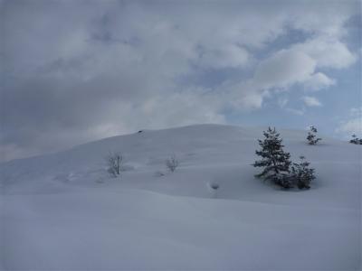 2012-02-12-014.jpg