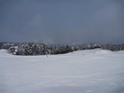 2012-02-12-017.jpg