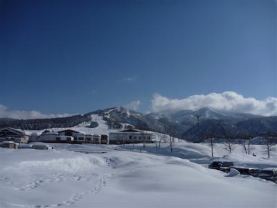 2012-02-12-050.jpg